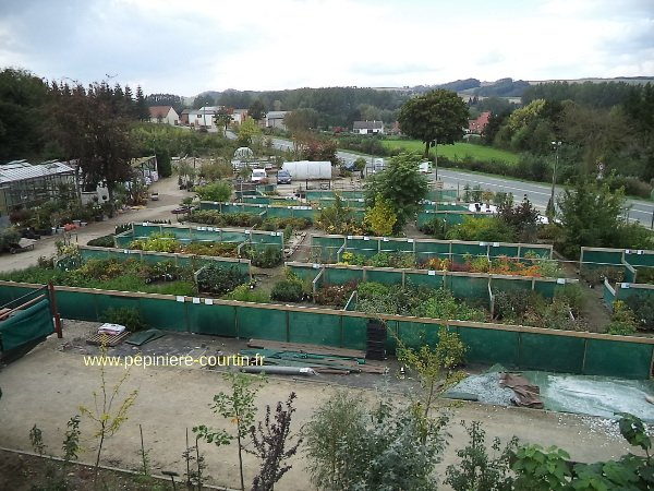 jardinerie-courtin