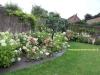 Parterre fleuri d'hortensias