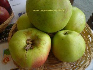 pommes Cabarette