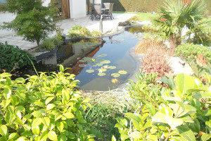bassins jardin cascade